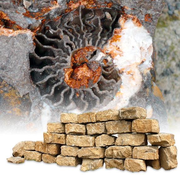Versteinerung aus der Trias und Mauerblöcke